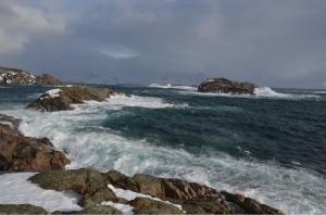 Det nordøstlige Norskehavet